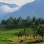 Trans Sumatra Classic